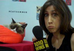 Grumpy Cat & Oskar the Blind Cat