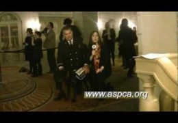 All For Animals #23: ASPCA 2010 Humane Awards