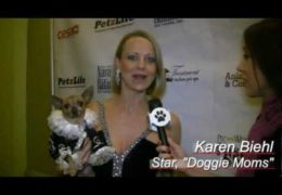 All For Animals #32: Pre-Westminster Dog Fashion Show Benefits NYC Shelter Animals