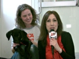 All For Animals TV #50: Winter Pet Safety Tips From The ASPCA