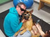 Adam & Buddy wearing protective glasses while Buddy gets laser therapy for his wound.