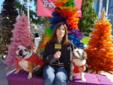 AFA Extra! Susan Richard emcees Strut Your Mutt 2019!