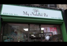 All For Animals #70- My Natural Pet Shop Covid-19 Brooklyn Pet Food Pantry